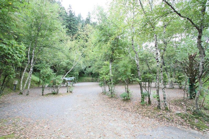 オートキャンプ場「赤倉の森」キャンプサイト