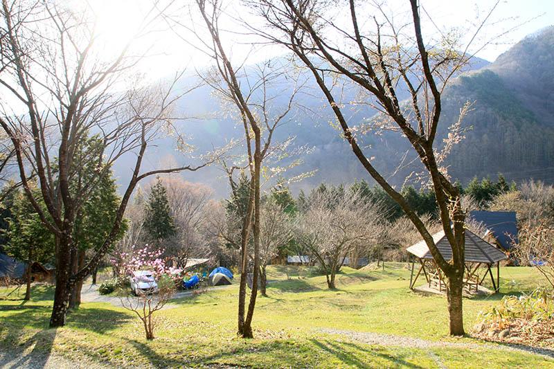2017年キャンプ・ミヤシタヒルズ・キャンプ朝