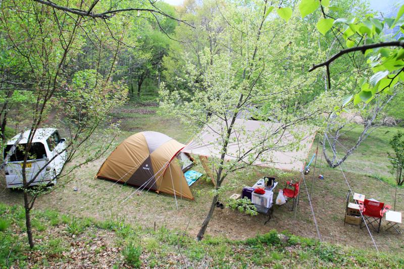 キャンプ場情報・信州まるべりーオートキャンプ場・サイト