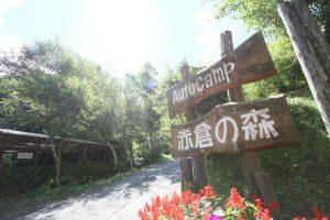 長野県長和町のオートキャンプ場「赤倉の森」